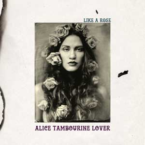 Alice_Tambourine_Lover_like_a_rose