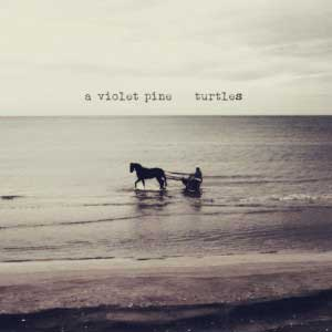 A_VIOLET_PINE_turtles