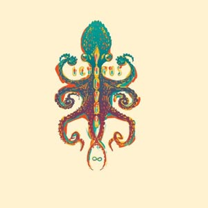 VOLVER octopus