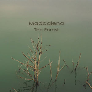 maddalena the forest